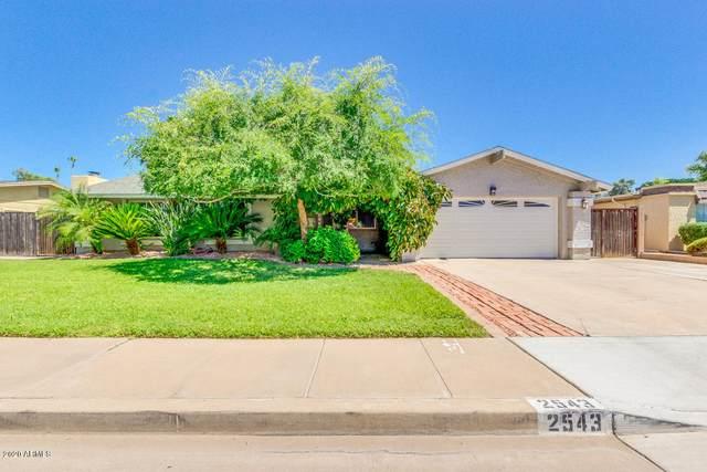 2543 W Plata Avenue, Mesa, AZ 85202 (MLS #6083219) :: Klaus Team Real Estate Solutions
