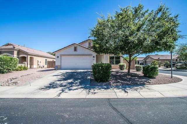 905 E Pedro Road, Phoenix, AZ 85042 (MLS #6083227) :: Nate Martinez Team