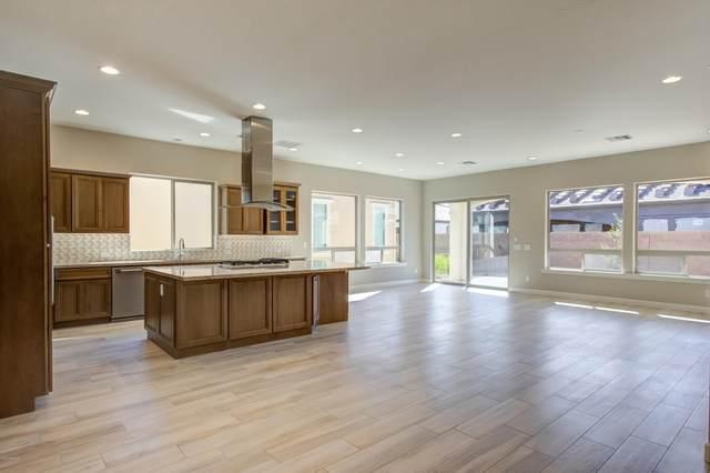 829 E Snowy Farm Drive, Queen Creek, AZ 85140 (MLS #6083230) :: Lux Home Group at  Keller Williams Realty Phoenix