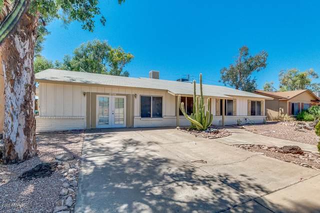 12732 N 40TH Place, Phoenix, AZ 85032 (MLS #6083241) :: Revelation Real Estate