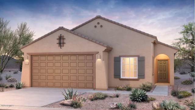 25912 W Vista North Drive, Buckeye, AZ 85396 (MLS #6083243) :: Revelation Real Estate