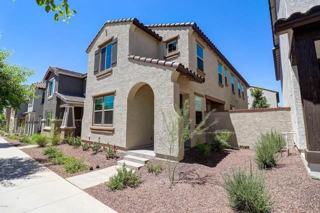 2508 N Stone Hill Road, Buckeye, AZ 85396 (MLS #6083265) :: Long Realty West Valley