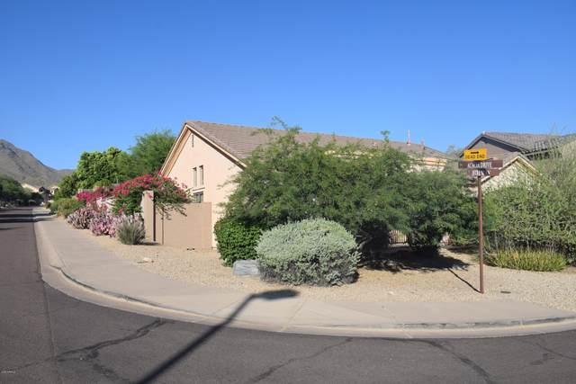 10567 E Acacia Drive, Scottsdale, AZ 85255 (MLS #6083267) :: Russ Lyon Sotheby's International Realty