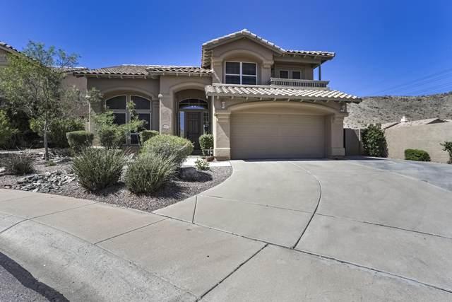 2338 E Hiddenview Drive, Phoenix, AZ 85048 (MLS #6083327) :: The Daniel Montez Real Estate Group