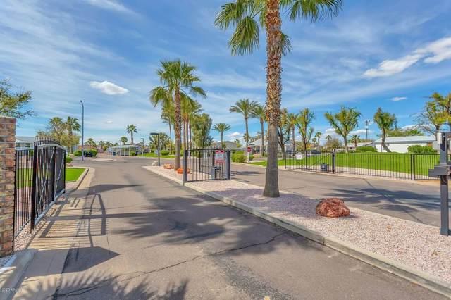 2000 S Apache Road #144, Buckeye, AZ 85326 (MLS #6083336) :: Brett Tanner Home Selling Team
