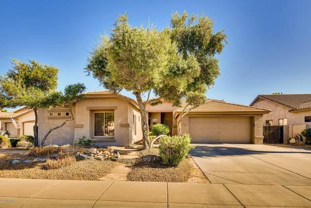 2441 E Indian Wells Place, Chandler, AZ 85249 (MLS #6083347) :: The Daniel Montez Real Estate Group