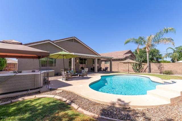 3166 E Kingbird Place, Chandler, AZ 85286 (MLS #6083350) :: Homehelper Consultants