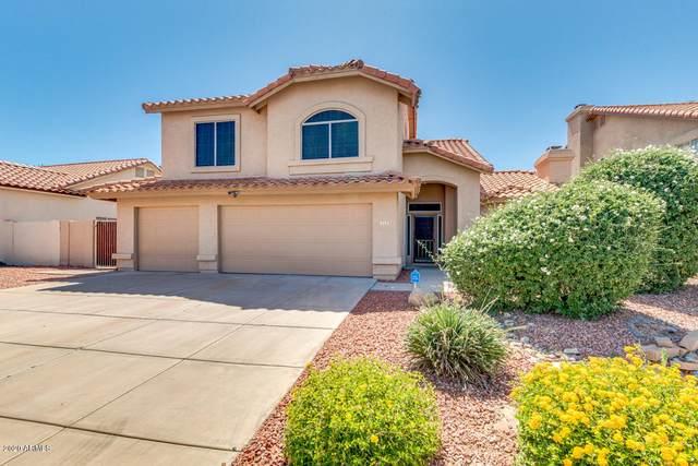 715 N Yucca Street, Chandler, AZ 85224 (MLS #6083370) :: Lucido Agency