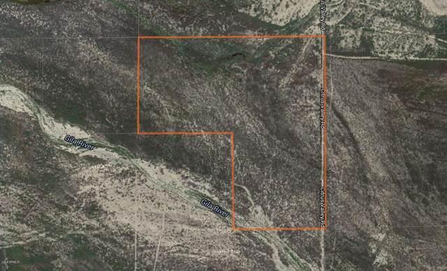 37000 S Citrus Valley Road, Gila Bend, AZ 85337 (MLS #6083375) :: Yost Realty Group at RE/MAX Casa Grande