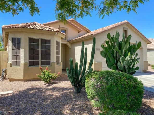 13373 W Boca Raton Road, Surprise, AZ 85379 (MLS #6083401) :: Revelation Real Estate