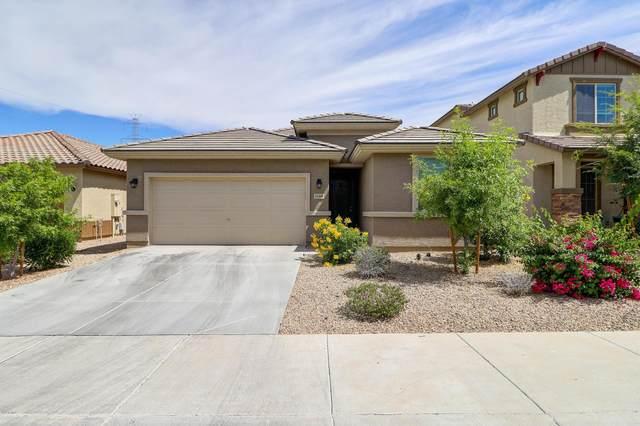 11448 W Lucas Drive, Surprise, AZ 85378 (MLS #6083459) :: The Laughton Team