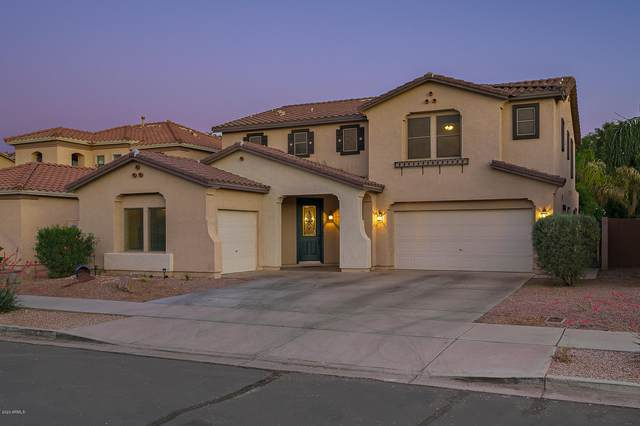 19685 E Canary Way, Queen Creek, AZ 85142 (MLS #6083478) :: The Property Partners at eXp Realty