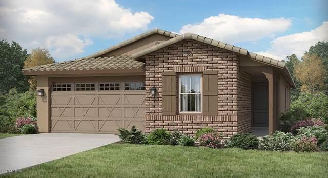 20234 W Harrison Street, Buckeye, AZ 85326 (MLS #6083488) :: Kepple Real Estate Group