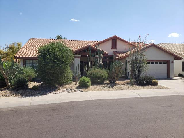 6913 W Wescott Drive, Glendale, AZ 85308 (MLS #6083492) :: Kepple Real Estate Group