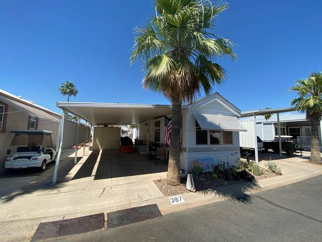 3710 S Goldfield Road, Apache Junction, AZ 85119 (MLS #6083495) :: My Home Group