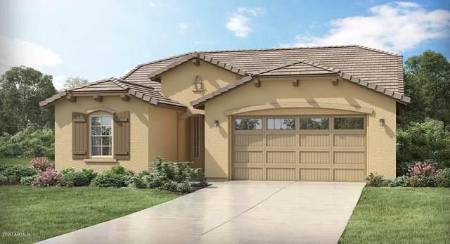 18855 W Cholla Street, Surprise, AZ 85388 (MLS #6083510) :: Devor Real Estate Associates