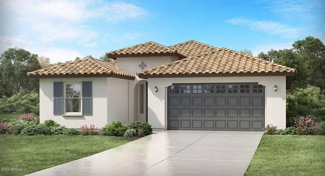 18831 W Cholla Street, Surprise, AZ 85388 (MLS #6083522) :: Devor Real Estate Associates