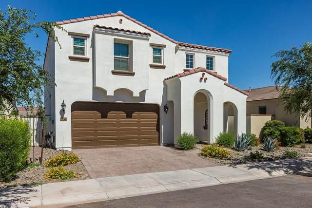 5241 S Cobalt Avenue S, Mesa, AZ 85212 (MLS #6083542) :: Lucido Agency