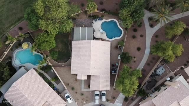2891 S Los Altos Place, Chandler, AZ 85286 (MLS #6083551) :: Arizona Home Group