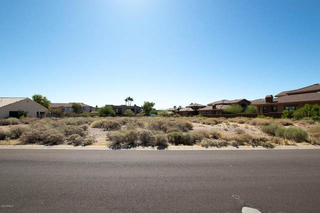 13609 N Cambria Drive, Fountain Hills, AZ 85268 (MLS #6083599) :: The Results Group