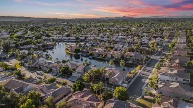 621 W Azalea Drive, Chandler, AZ 85248 (MLS #6083631) :: The Property Partners at eXp Realty