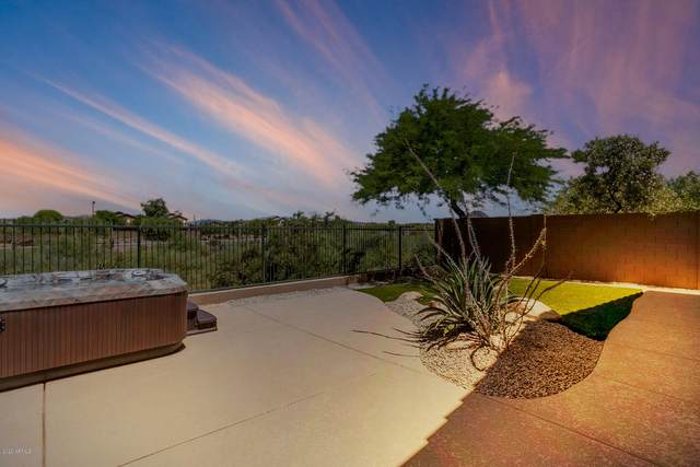 40704 N Apollo Way, Anthem, AZ 85086 (MLS #6083641) :: Revelation Real Estate