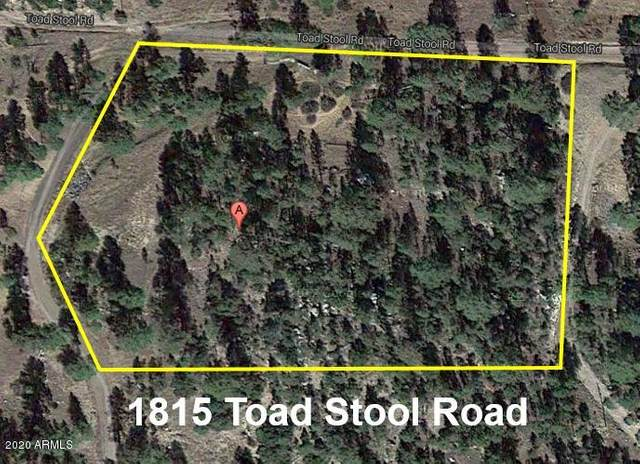 1815 Toad Stool Road, Heber, AZ 85928 (MLS #6083652) :: Russ Lyon Sotheby's International Realty