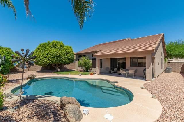 7217 W Surrey Avenue, Peoria, AZ 85381 (MLS #6083663) :: My Home Group