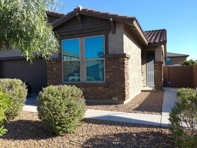40752 W Rio Grande Drive, Maricopa, AZ 85138 (MLS #6083694) :: Power Realty Group Model Home Center