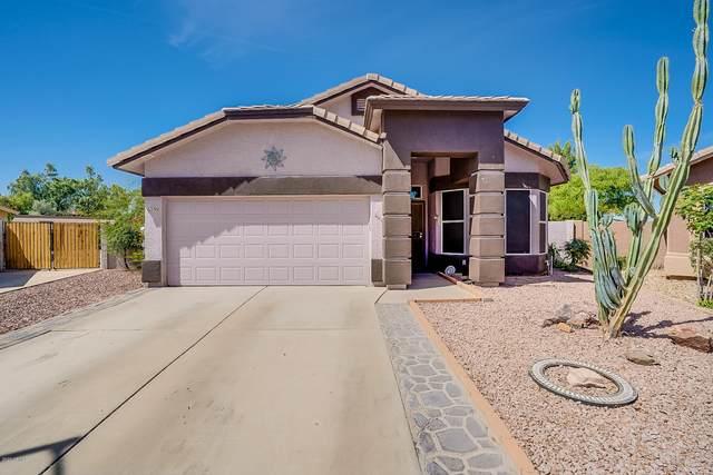 6239 W Navajo Drive, Glendale, AZ 85302 (MLS #6083730) :: REMAX Professionals