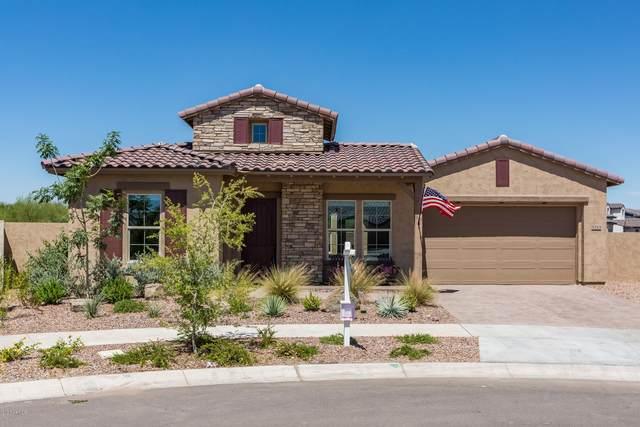 5213 S Wildrose, Mesa, AZ 85212 (MLS #6083737) :: Lucido Agency