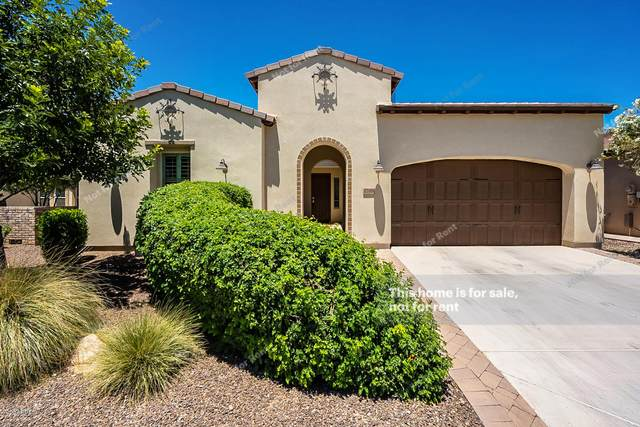 1788 E Amaranth Trail, San Tan Valley, AZ 85140 (MLS #6083765) :: The Helping Hands Team