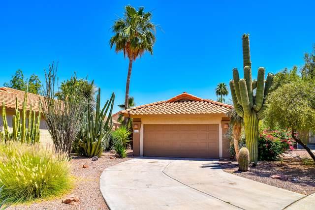 1061 N Arroya, Mesa, AZ 85205 (MLS #6083776) :: The Helping Hands Team