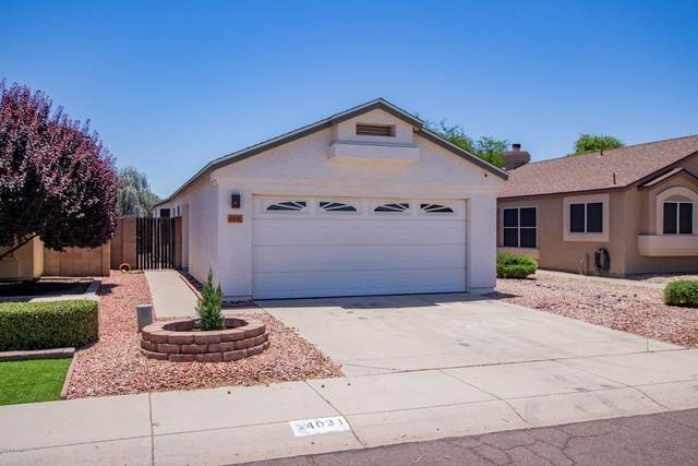 4031 W Fallen Leaf Lane, Glendale, AZ 85310 (MLS #6083784) :: The W Group