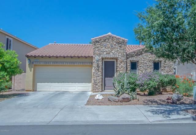 6606 S 41ST Lane, Phoenix, AZ 85041 (MLS #6083790) :: The W Group