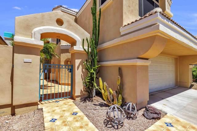 1136 E Hiddenview Drive, Phoenix, AZ 85048 (MLS #6083795) :: The Laughton Team