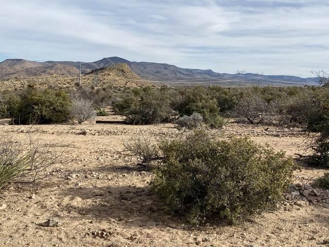 Lot 11 Homestead Lane, Hackberry, AZ 86411 (MLS #6083798) :: Keller Williams Realty Phoenix
