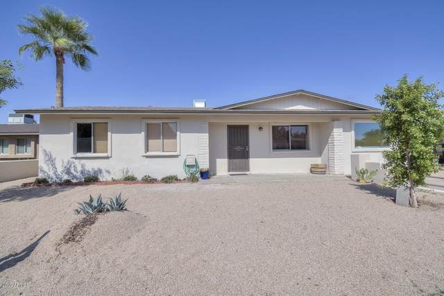 1006 W Helena Drive, Phoenix, AZ 85023 (MLS #6083802) :: Lifestyle Partners Team
