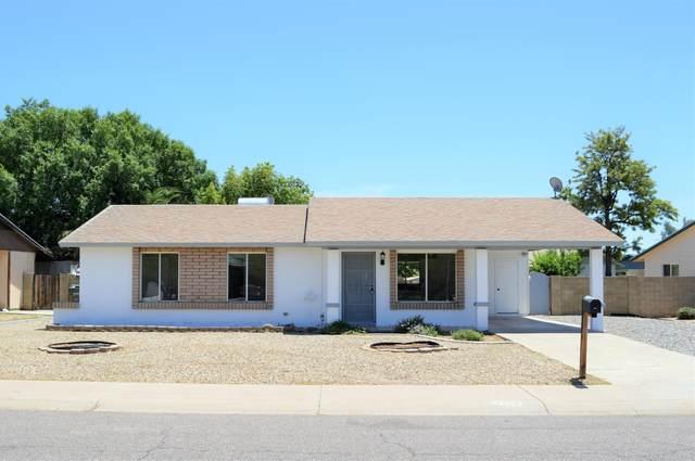 19809 N 5TH Drive, Phoenix, AZ 85027 (MLS #6083841) :: REMAX Professionals