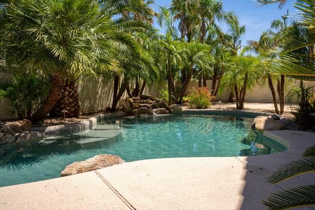 2970 E Riviera Place, Chandler, AZ 85249 (MLS #6083887) :: Yost Realty Group at RE/MAX Casa Grande