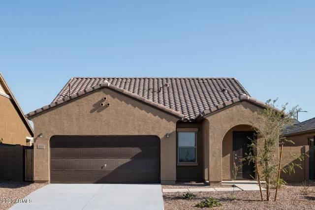 223 N 199TH Lane, Buckeye, AZ 85326 (MLS #6083897) :: Devor Real Estate Associates