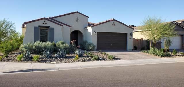 9638 E Thatcher Avenue, Mesa, AZ 85212 (MLS #6083910) :: Arizona Home Group