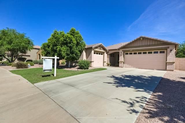 1464 E Birdland Court, Gilbert, AZ 85297 (MLS #6083940) :: Power Realty Group Model Home Center