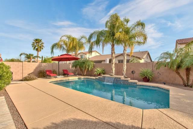 2445 E Anika Drive, Gilbert, AZ 85298 (MLS #6083962) :: Power Realty Group Model Home Center
