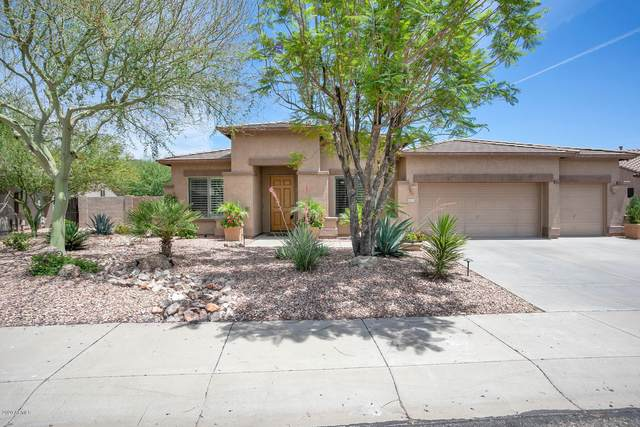 4211 W Reddie Loop, Phoenix, AZ 85083 (MLS #6083988) :: The W Group