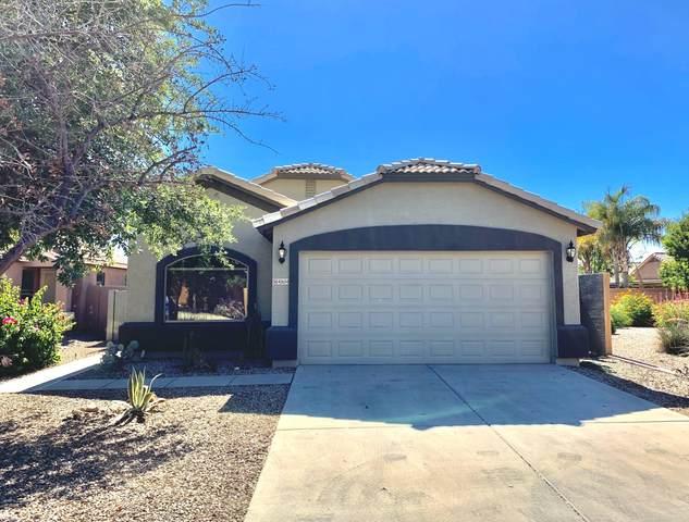 41654 N Ranch Drive, San Tan Valley, AZ 85140 (MLS #6083994) :: My Home Group