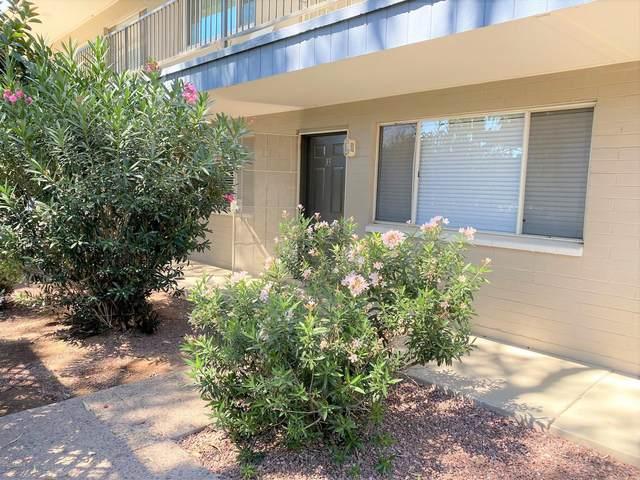 1111 E Turney Avenue #33, Phoenix, AZ 85014 (MLS #6083997) :: REMAX Professionals