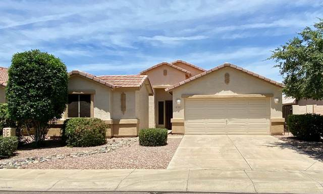 4410 W Park Street, Laveen, AZ 85339 (MLS #6084036) :: The W Group