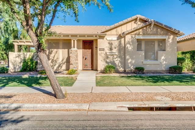 3536 S Wren Drive, Gilbert, AZ 85297 (MLS #6084048) :: Arizona Home Group