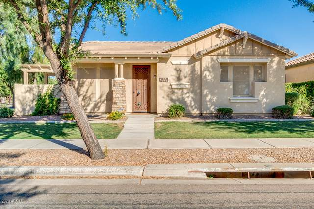 3536 S Wren Drive, Gilbert, AZ 85297 (MLS #6084048) :: The Property Partners at eXp Realty